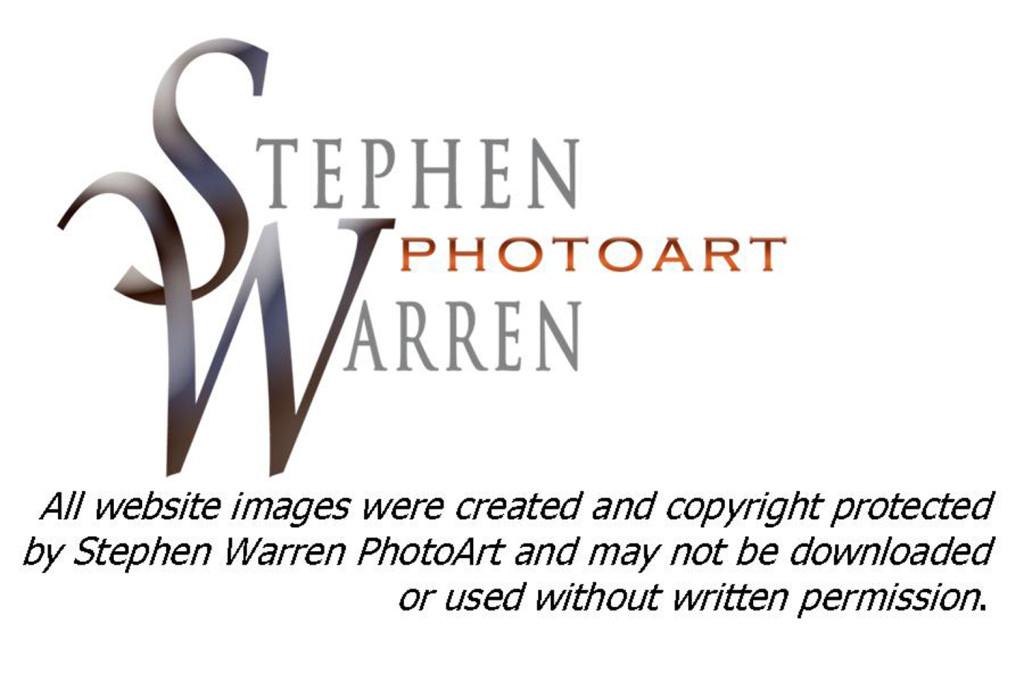 Copyright Notice jpg
